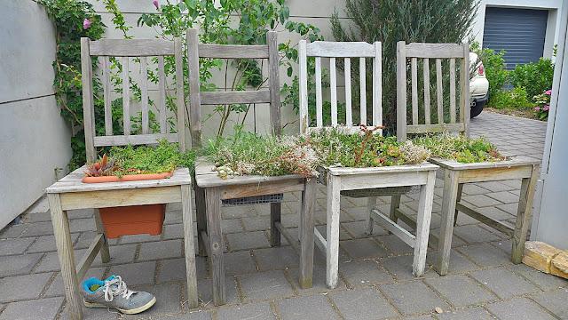 ungewöhnliche Blumentöpfe - Stühle als Blumentöpfe
