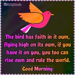 English good morning quote