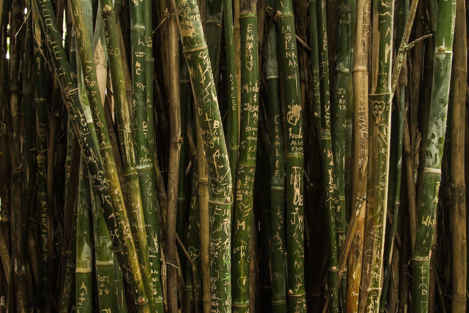 Kerajinan Dari Bambu Yang Gampang