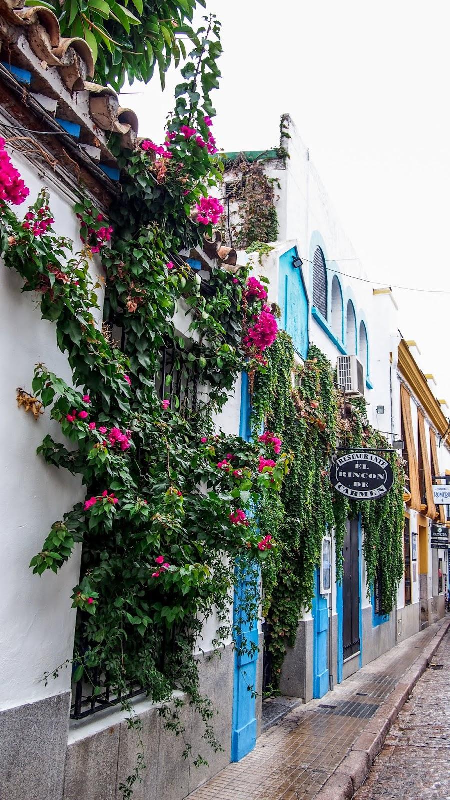 Minireissu Córdobaan: mitä tehdä ja nähdä