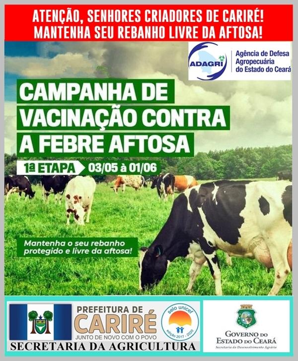 Secretaria da Agricultura de Cariré avisa que continua a Vacinação Contra Febre Aftosa e o prazo vai até dia 1º de junho