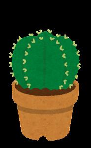 鉢植えのサボテンのイラスト5