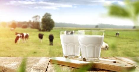 Sempurnakan Pola Hidup Sehat dengan Susu