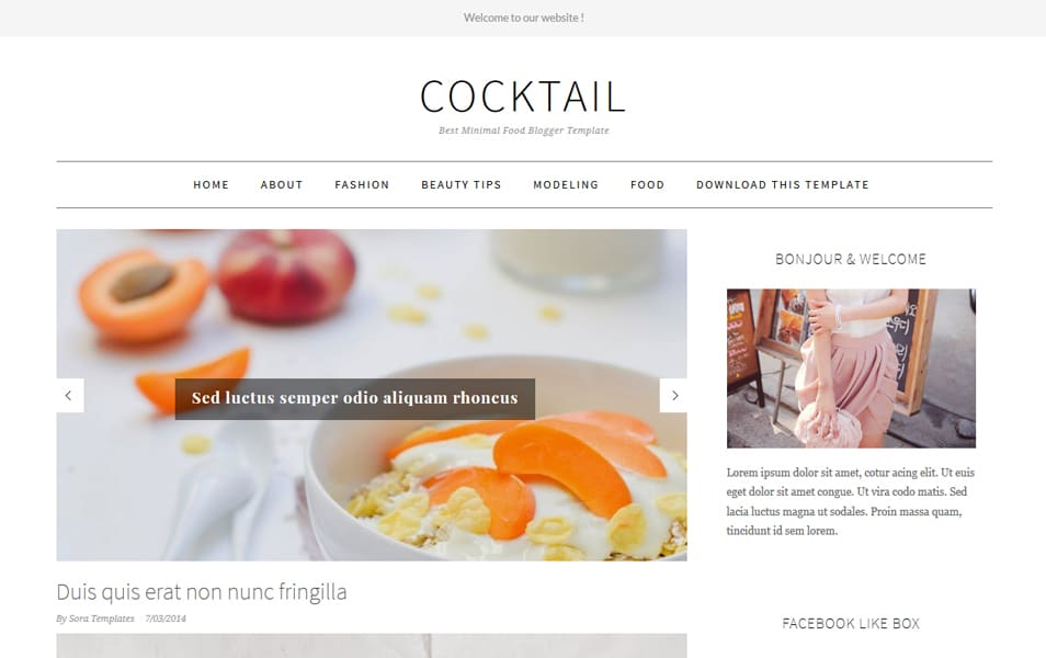 Food Blogger Templates