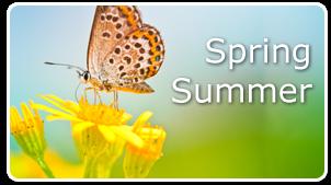 """Képtalálat a következőre: """"summer spring"""""""