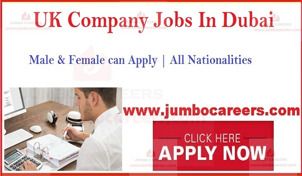 Recent Accountant Jobs, Current Accountant Jobs,