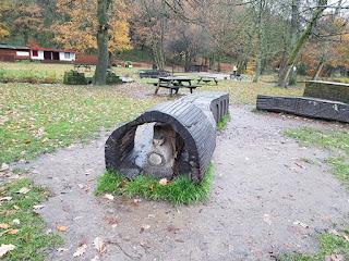 Park bench at Shibden Park in Halifax