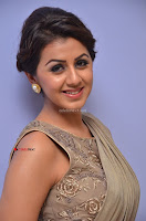 Nikki Galrani in Saree 038.JPG