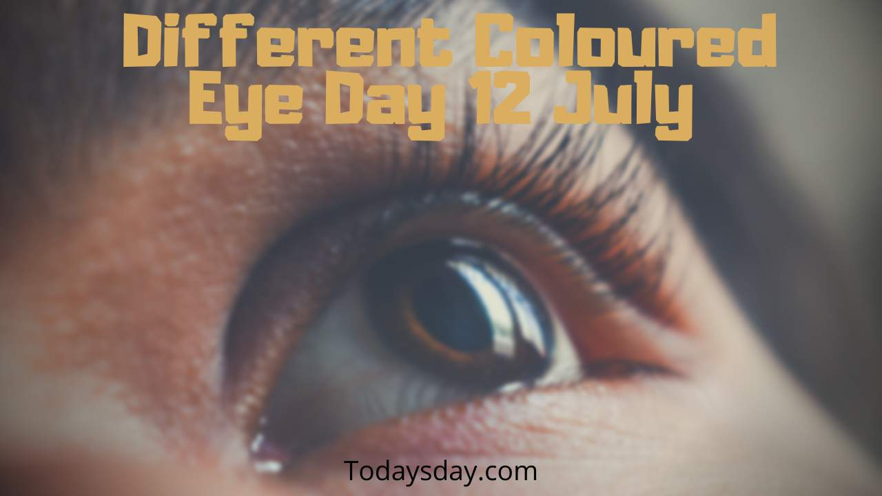 Different coloured eye day