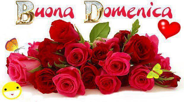 Che la vita continua serena domenica a tutti immagini for Foto di rose bellissime