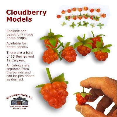 Cloudberry props, cloudberry models, photo prop