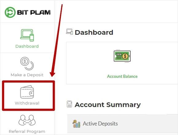 Вывод средств в Bit Plam