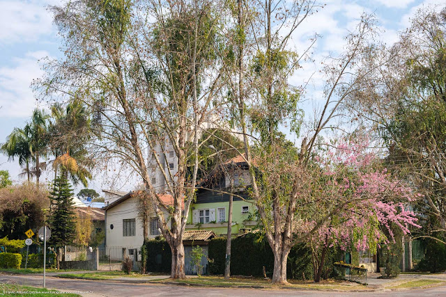 Casa em esquina com árvores na calçada