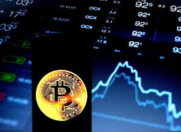 Which cryptocurrencies will succeed