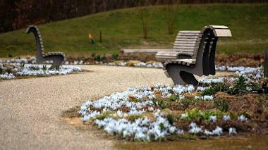 Primer despertar de la primavera en Vlinderhof, el jardín comunitario en Utrecht