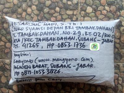 Benih Padi Pesanan  U. SAMSUL HADI S.Th.I Subang, Jabar.   (Setelah di Packing).