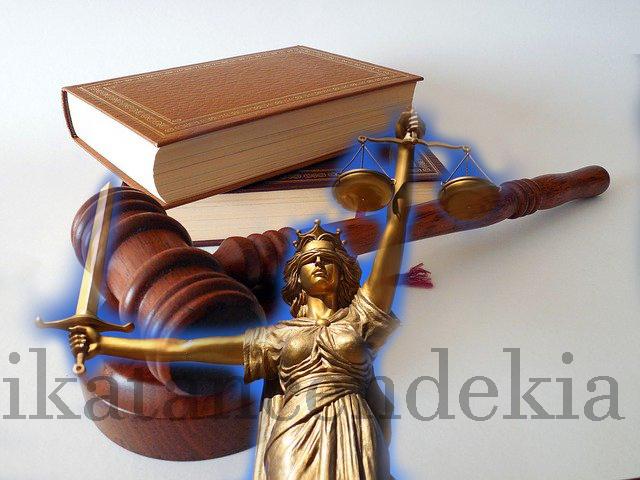 jurnal omnibus law