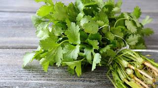 7 Makanan Sehat Untuk Menurunkan Asam Urat Tinggi