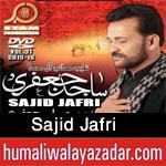 http://www.humaliwalayazadar.com/2015/10/sajid-jafri-nohay-2016.html