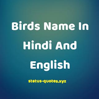 [50+] Birds Name In Hindi And English || पक्षियों के नाम हिंदी में