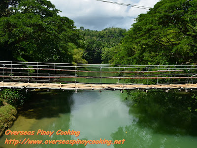 Bamboo Hanging Bridge