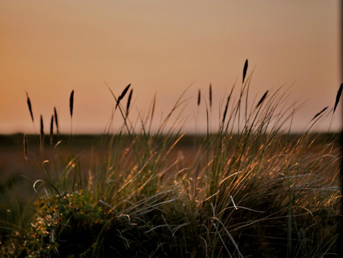 Läso Sonnenuntergang