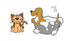 Formulas produtos Pet Shop Download Grátis