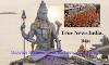 Sawan Shivratri & Kanwar Yatra in India 2019: Lord Shiva Quotes, Status, Essay.