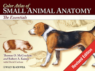Color Atlas of Small Animal Anatomy [Revised Edition]