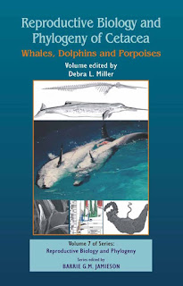 Reproductive Biology and Phylogeny of Cetacea Whales, Porpoises and Dolphins