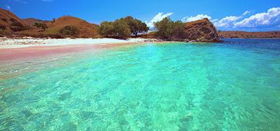 Pesona Keindahan Pantai Pink Pulau Komodo Indonesia
