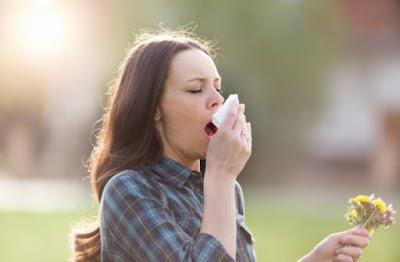 9 fakta Alergi musiman dan pertanyaan yang sering diajukan