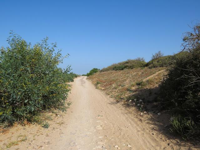 Souss Massa National Park, Morocco
