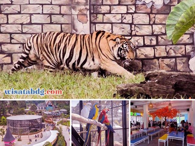 Wisata Penuh Sensasi, Makan Ditemani Harimau Benggala di Lembang Park and Zoo