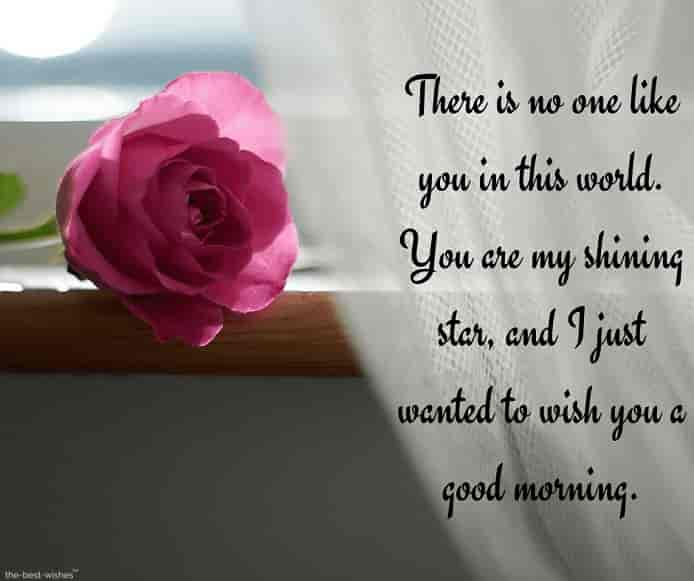 cute good morning text messages for your crush with rose and shining sun