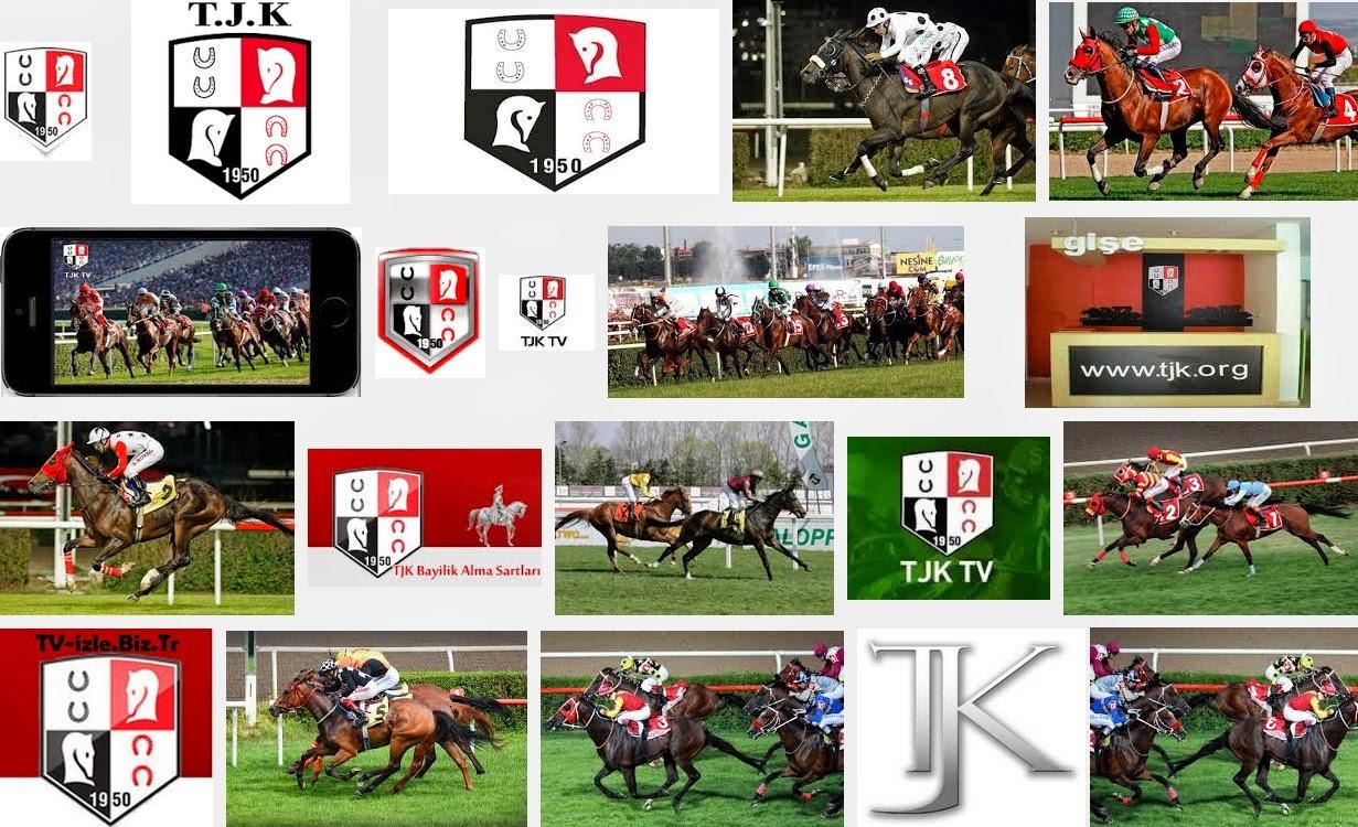 AT YARIŞLARI internetten at yarışı izle TJK TV ile birlikte muhtemel ganyanlarda canlı olarak gösterilmektedir.