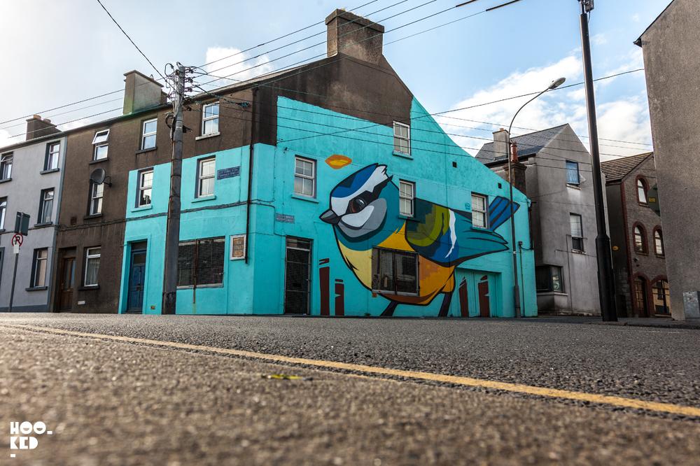 Street Artist Dan Leo Waterford Walls Mural in Ireland. Photo ©Hookedlbog