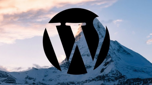 How to Create a Wordpress Portfolio Website