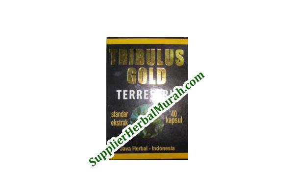 Ekstrak Tribulus Gold Terrestris