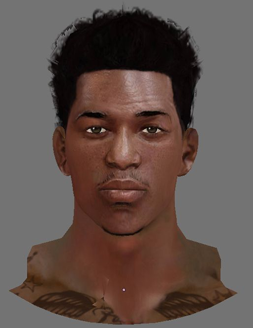 NBA 2K14 Nick Young Next-Gen Face Mod