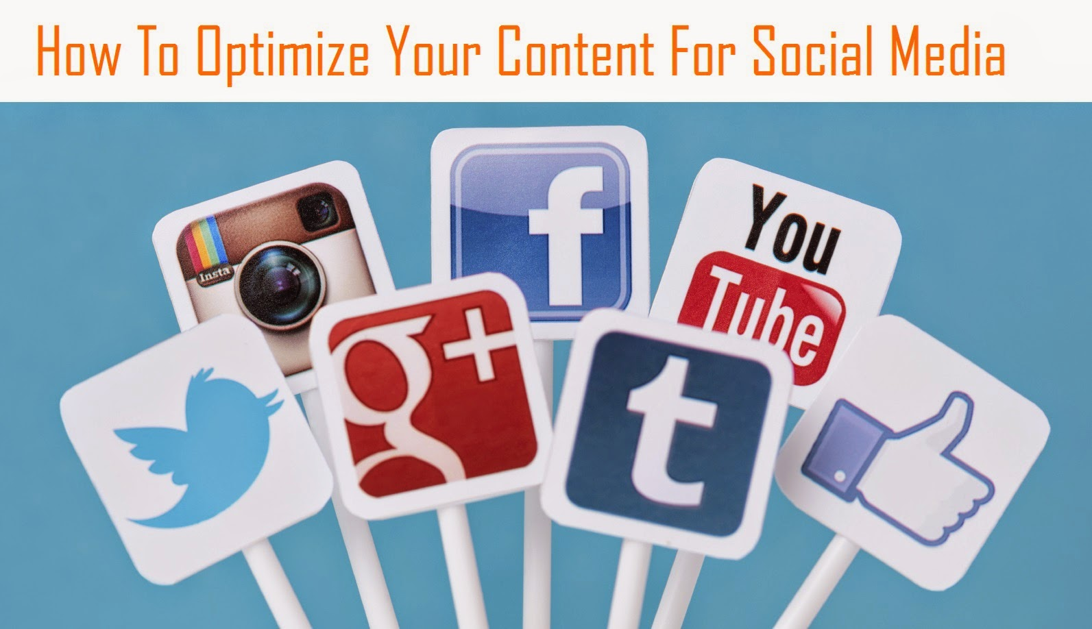 How To Optimize Your Content For Social Media & SEO