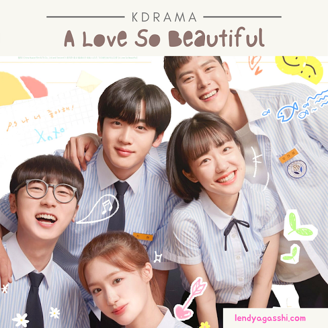 Review A Love So Beautiful Drama Korea