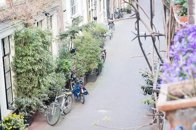 amsterdam calle