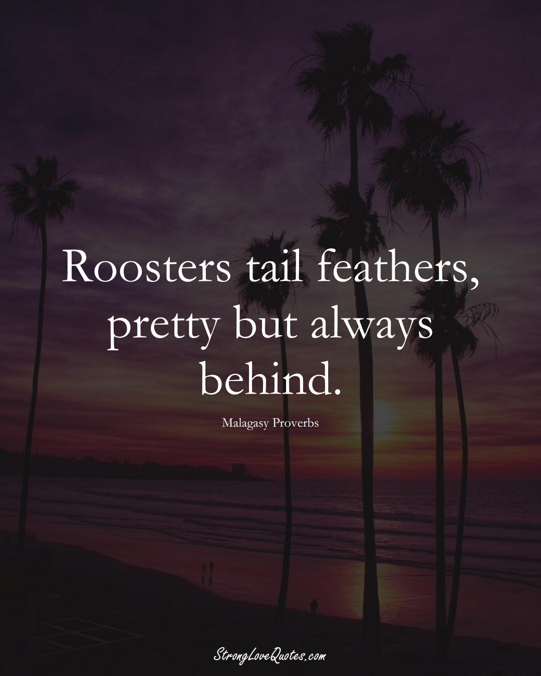 Roosters tail feathers, pretty but always behind. (Malagasy Sayings);  #AfricanSayings
