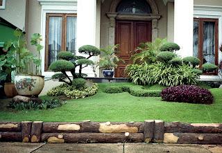 Tukang Taman minimalis jakarta