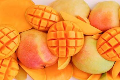 5 Kegunaan buah Mangga untuk Kesehatan dan Kecantikan