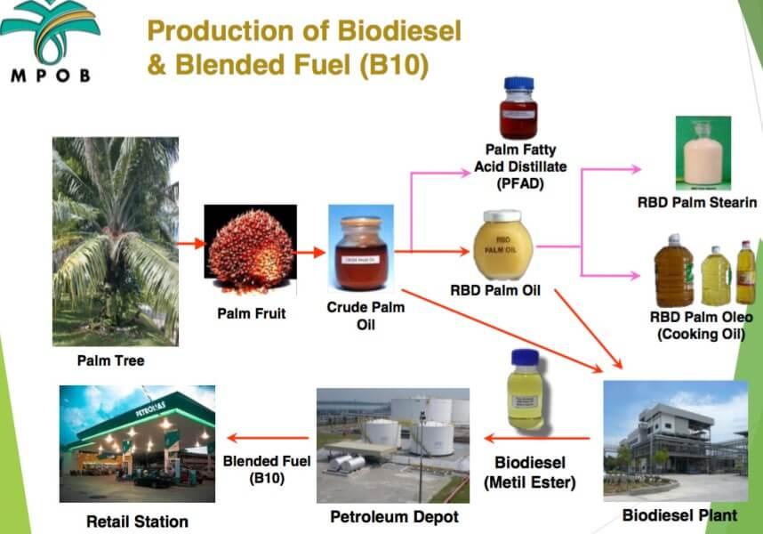 Biodiesel Kelapa Sawit