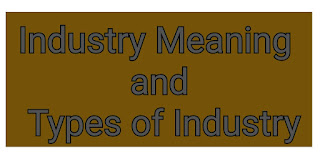 Industry Meaning and Types of Industry