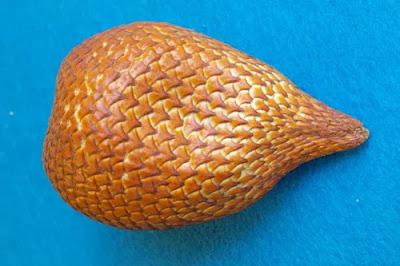 Salak - Salak fruit in Hindi