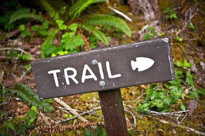 Blog de trail